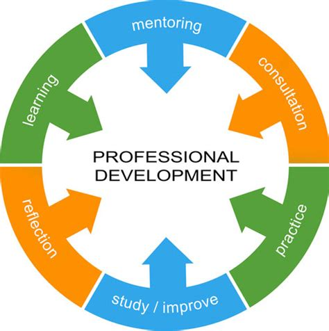 Essay on Professional Development in Nursing - Cramcom